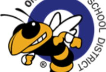 Yellowjacket image