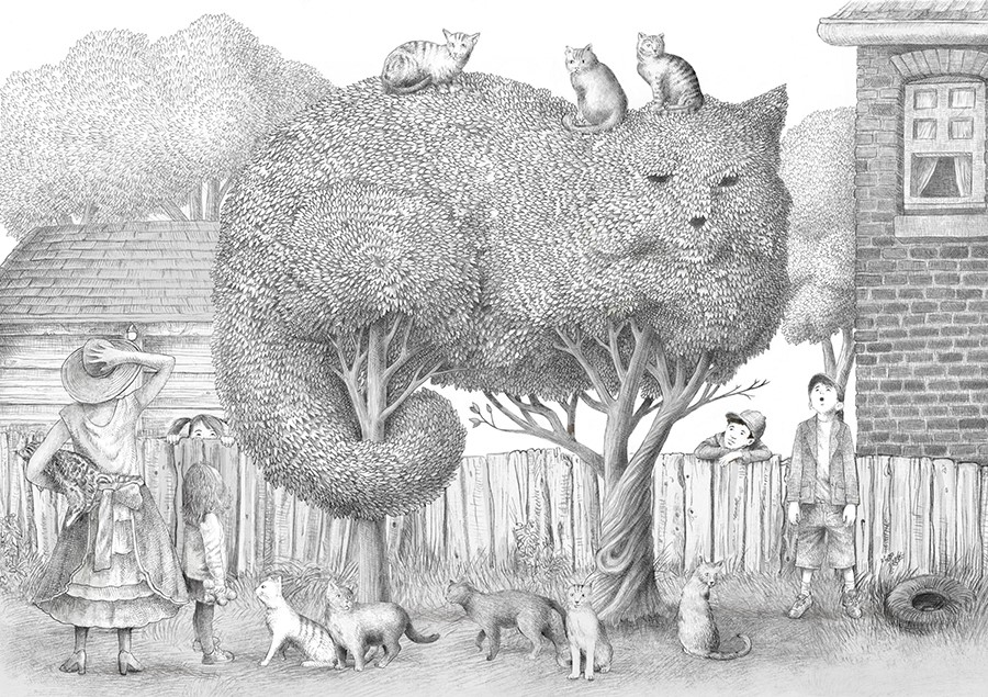 Before Color was Added to the Illustrations