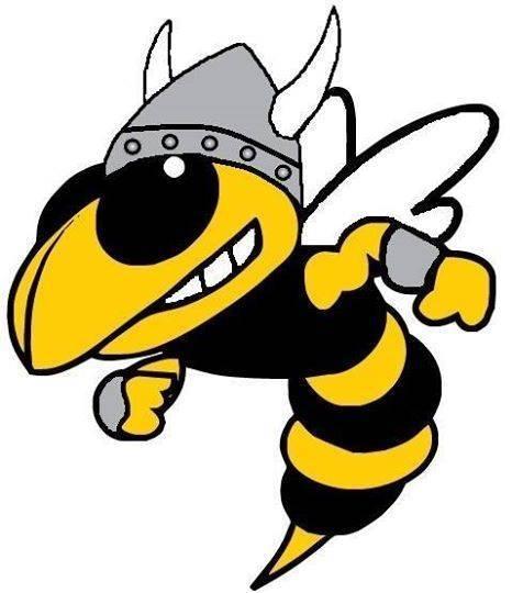 Valleyview viking mascot
